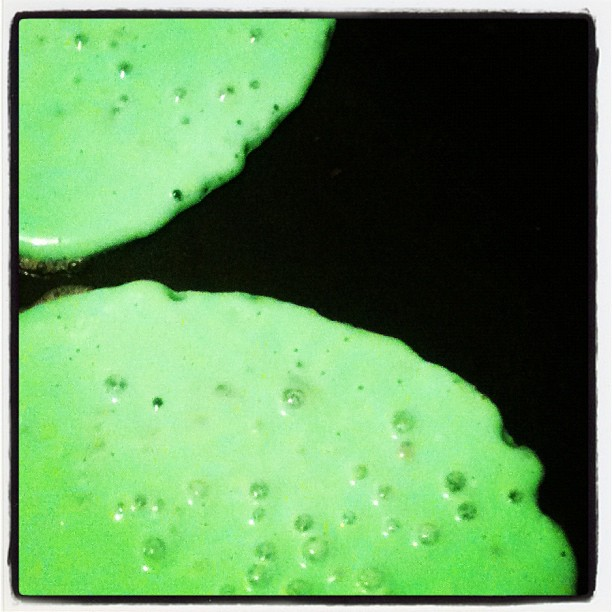 Green Blueberry Pancakes. They just taste better.