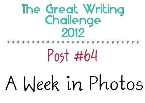 Post #64: A Week In Photos