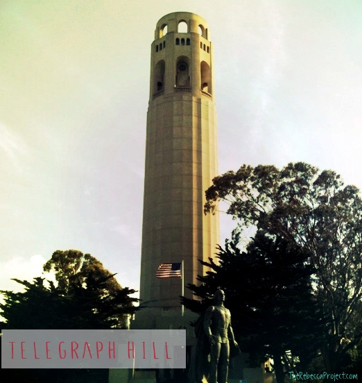 You can find Telegraph Hill by Coit Tower rising from the peak.
